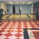 Aleksandar-Palace-EltaInzenering-4